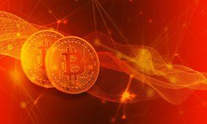 die Bullen bei Bitcoin Trader